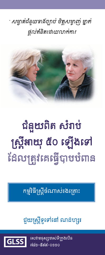 Women's and Family Abuse Program Brochure Khmer